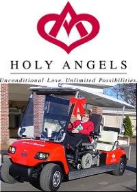 golf cart store prices manufacturers
