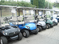 cheap used golf carts for sale