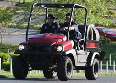cheap 4x4 Golf Cart for sale