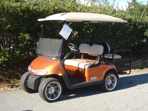 Gas Golf Carts together with Ez Go St 480 Wiring Diagram as well Ezgo Golf Cart Batteries 6 Volt 8 Volt And 12 Volt Batteries further 2015 Ez Go Rxv Freedom 48v additionally E Z Go For Sale C136964. on ez go freedom rxv golf cart